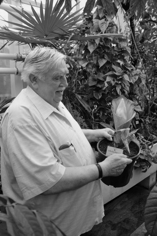 Йозеф Богнер (29.01.1939 - 23.04.2020) на своей любимой работе в Мюнхенском Ботаническом Саду.