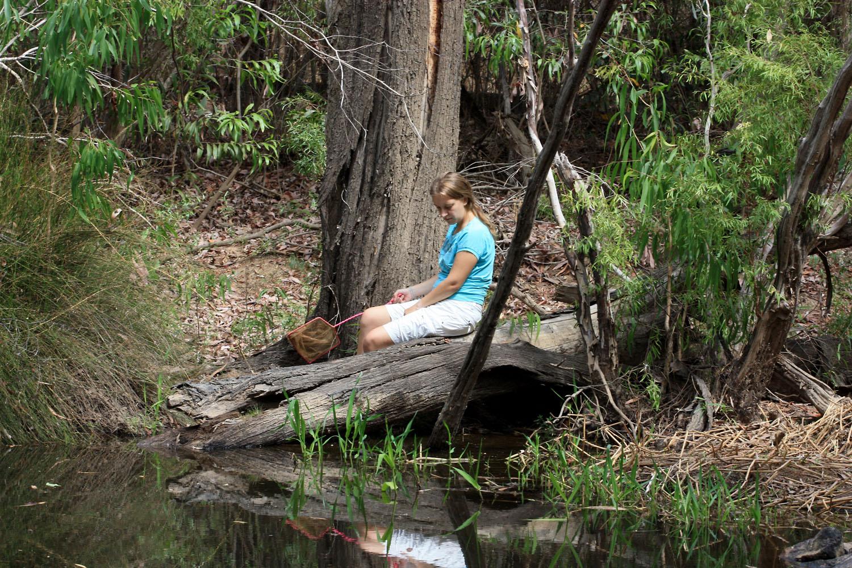 """Васнецовская """"Аленушка"""" на австралийский лад, а если серьезно, то зачастую, чтобы поймать в реке шириной более 2 метров рыбу, приходилось вот так затаившись сидеть по несколько десятков минут. Река Ханна (Hann River), Квинсленд (Queensland), Австралия (Australia)."""