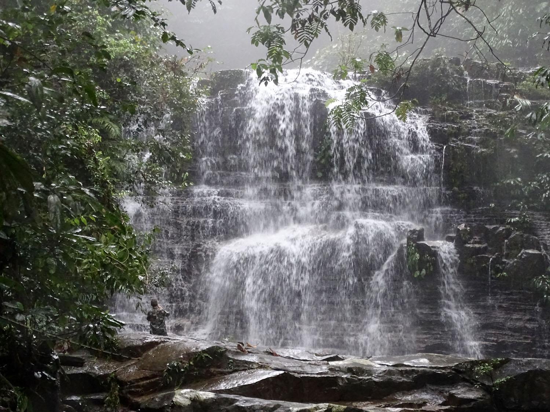 Водопад на небольшой речке Sungai Rayu является основной достопримечательностью Национального парка Кубах (Kubah National Park), а также местом обитания множества околоводных растений, перспективных для содержания в домашних аквариумах и палюдариумах. Штат Саравак, Борнео.