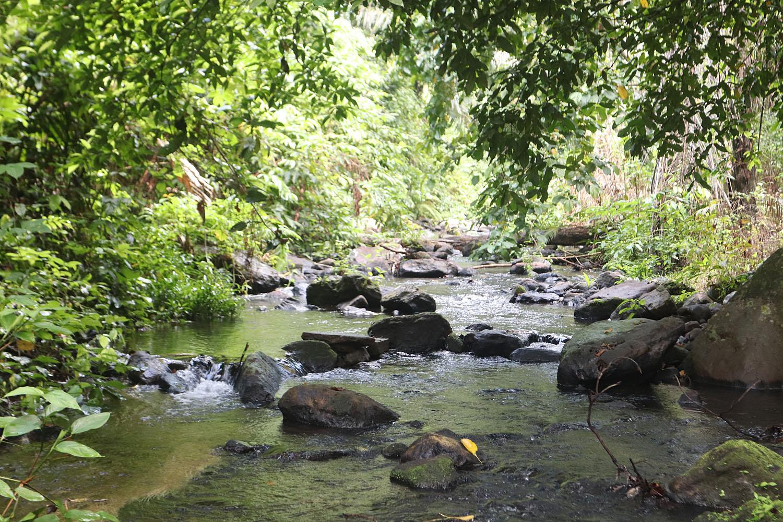 Горный ручей на высоте нескольких сотен метров над уровнем моря образует небольшой водопад Air Terjun. Сам водопад ничем непримечателен и почти незаметен в сухой сезон из-за малого количества воды. Впадает ручей в залив Sabang, расположенный у северной части одноименного острова. Тропический лес вокруг ручья наполнен большим разнообразием флоры и фауны, доступной для наблюдений.