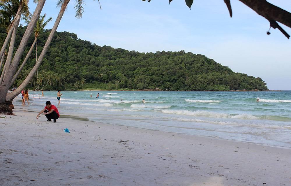 Знаменитый пляж Bai Sao оказался привлекательным не только своим мелким белым песком, но и небольшим ручьем вытекающим в море, где мы обнаружили аплохейлусов панхакс (Aplocheilus panchax).