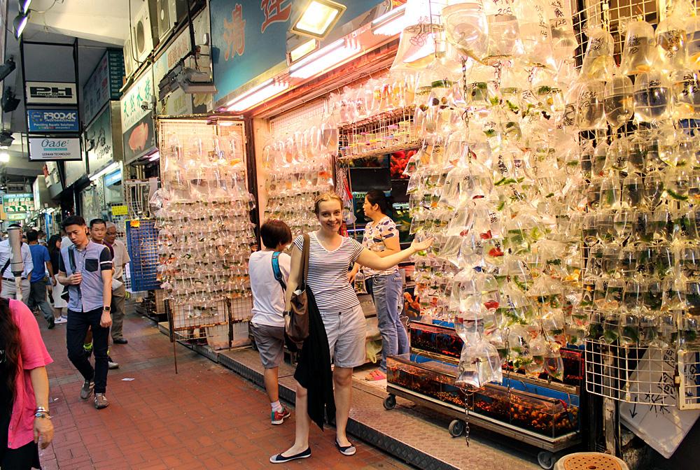 Несмотря на то, что Гонконг часто называют каменными джунглями, когда дело касается торговли, свой товар гонконгцы не скрывают в темных подвалах магазинов, а вываливают (в прямом смысле) на улицы. Не исключением стала и рыбная улица, на которой продается почти все известное миру многообразие обитателей домашних аквариумов, причем по очень низким ценам.
