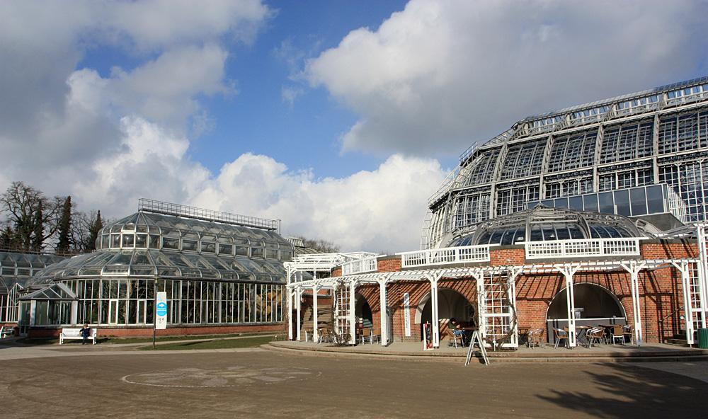Оранжереи Берлинского ботанического сада. В настоящее время сад принадлежит Свободному университету Берлина (Freie Universität Berlin). Центральная оранжерея была построена в 1905 году под руководством Адольфа Энглера (Adolf Engler).