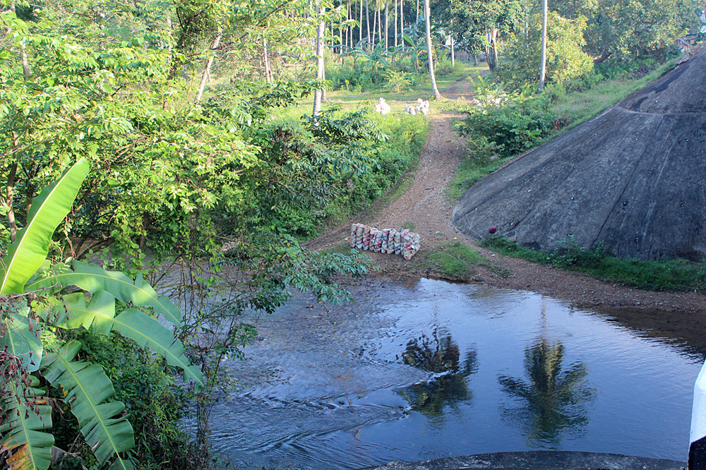 Мешки с галькой у Manlalic bridge. Учитывая слабое укоренение криптокорины карликовой (Cryptocoryne pygmaea), добыча гальки, безусловно, оказывает разрушительное влияние на численность природных популяций растения.