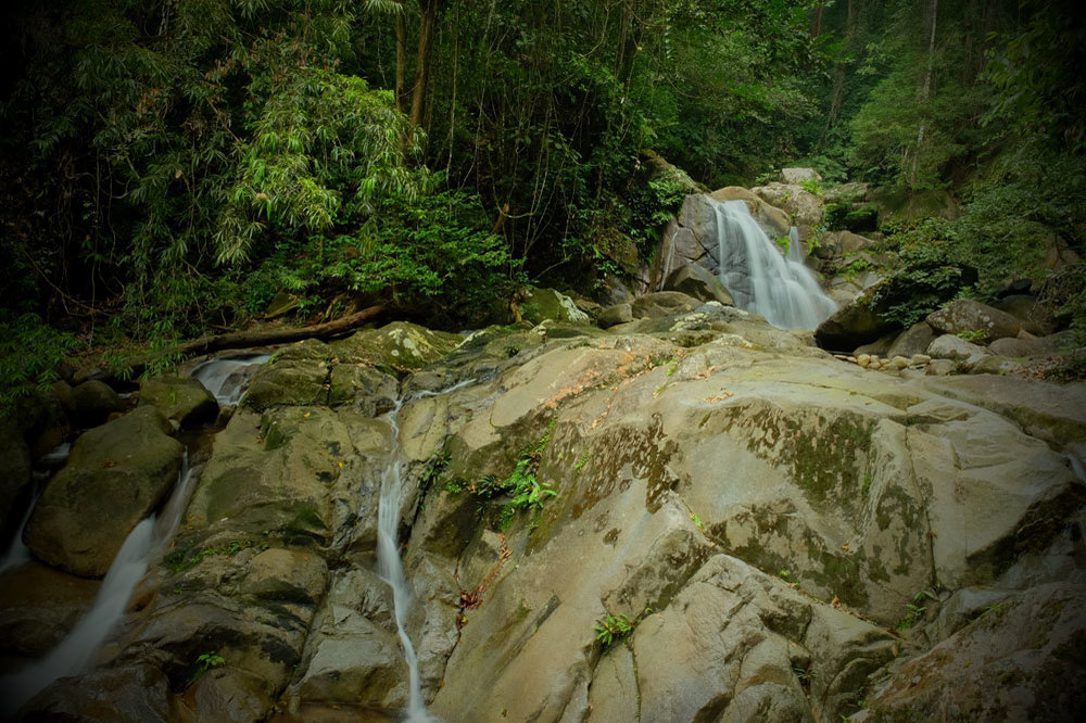 National Park Gunung Gading